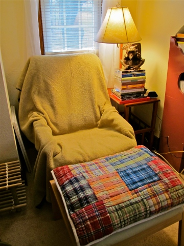 Winterized Space Chair